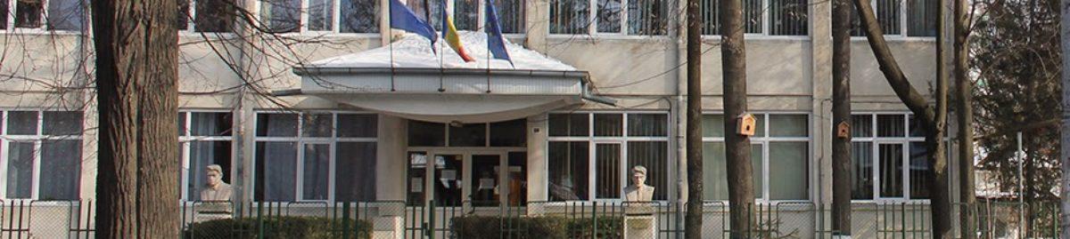 """Liceul de artă """"Ștefan Luchian"""" Botoșani"""